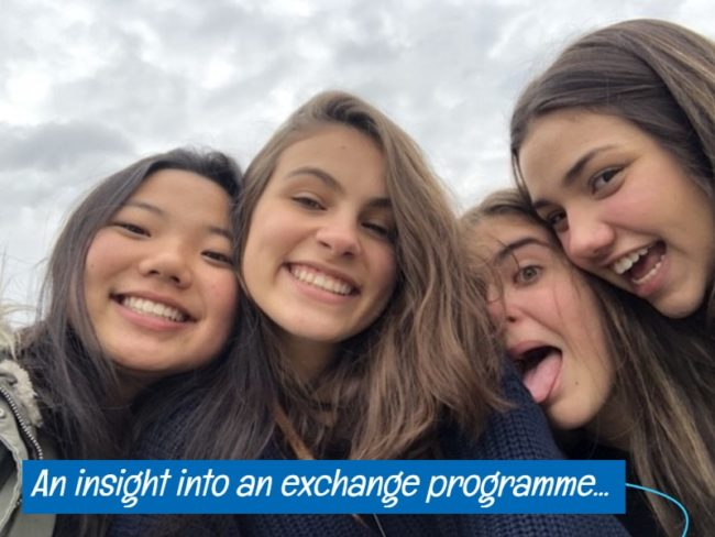 exchange experience in the UK - icon